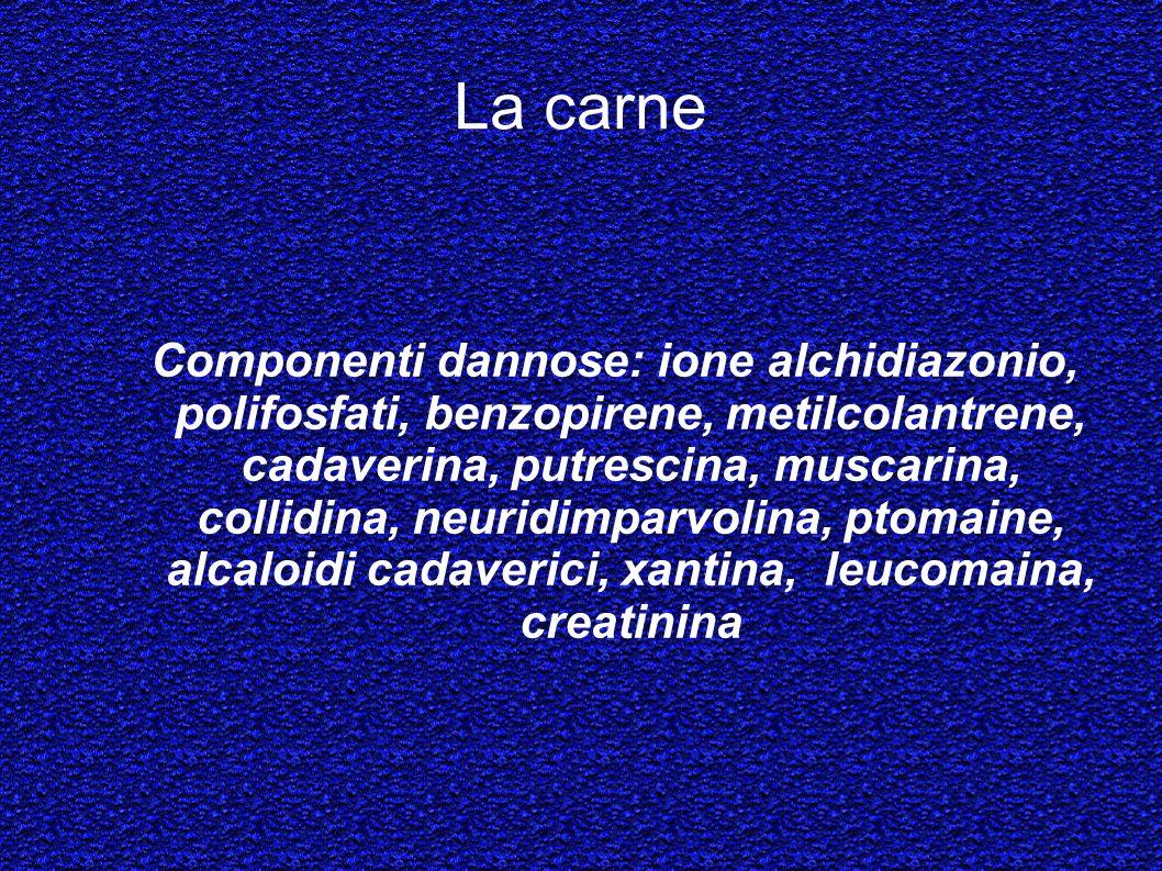La carne Componenti dannose: ione alchidiazonio, polifosfati, benzopirene, metilcolantrene, cadaverina, putrescina, muscarina, collidina, neuridimparv