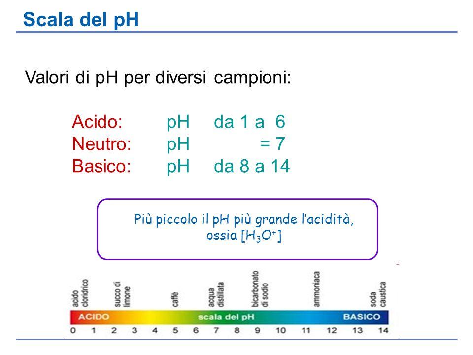 Valori di pH per diversi campioni: Acido: pH da 1 a 6 Neutro: pH = 7 Basico: pH da 8 a 14 Scala del pH Più piccolo il pH più grande lacidità, ossia [H