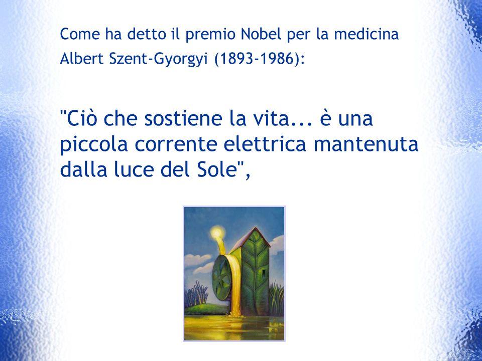Come ha detto il premio Nobel per la medicina Albert Szent-Gyorgyi (1893-1986):