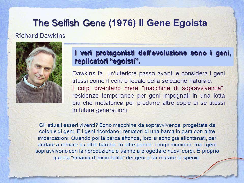 The Selfish Gene The Selfish Gene (1976) Il Gene Egoista Richard Dawkins Dawkins fa un'ulteriore passo avanti e considera i geni stessi come il centro