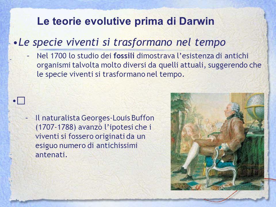 Le teorie evolutive prima di Darwin Le specie viventi si trasformano nel tempo –Nel 1700 lo studio dei fossili dimostrava lesistenza di antichi organi