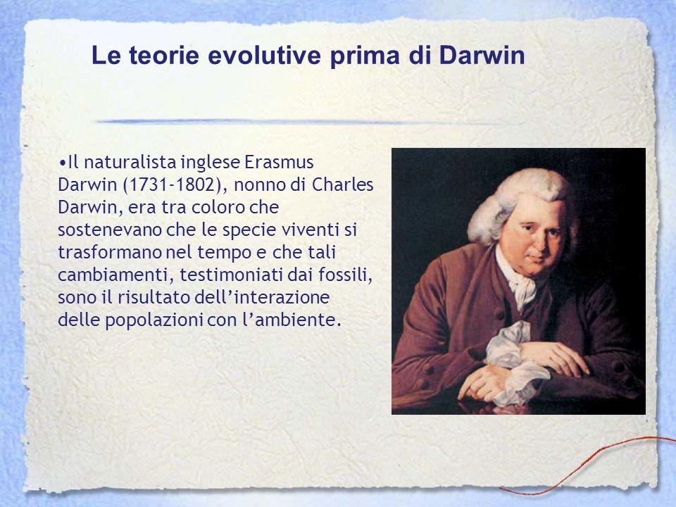 Il naturalista inglese Erasmus Darwin (1731-1802), nonno di Charles Darwin, era tra coloro che sostenevano che le specie viventi si trasformano nel te