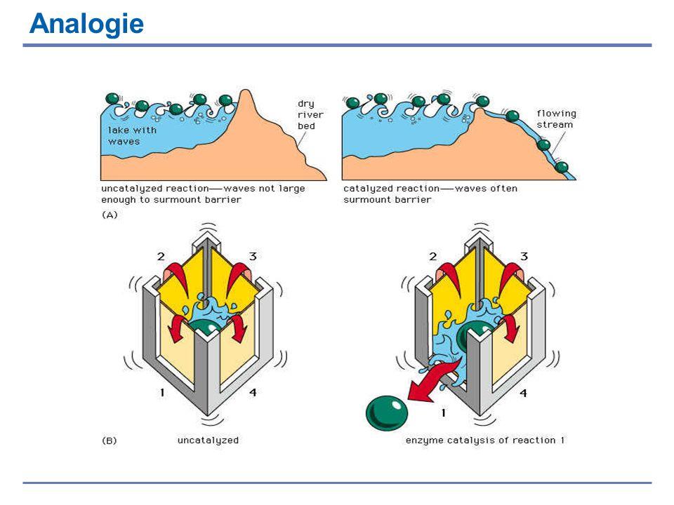 I substrati normalmente necessitano di una notevole quantità di energia (picco rosso) per giungere allo stato di transizione, e reagire per formare il