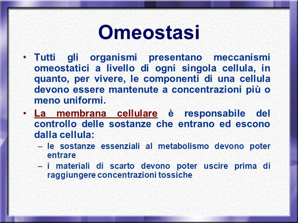Omeostasi nella cellula: meccanismi di trasporto Per mantenere costanti i propri equilibri biochimici, la cellula possiede diversi tipi di meccanismi di trasporto: Passivo: non vi è consumo di energia attivo: è richiesto un apporto energetico.