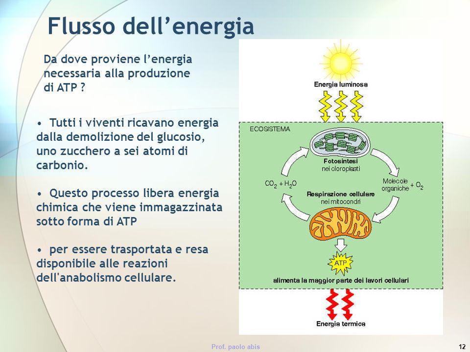 Prof. paolo abis12 Flusso dellenergia Da dove proviene lenergia necessaria alla produzione di ATP ? Tutti i viventi ricavano energia dalla demolizione