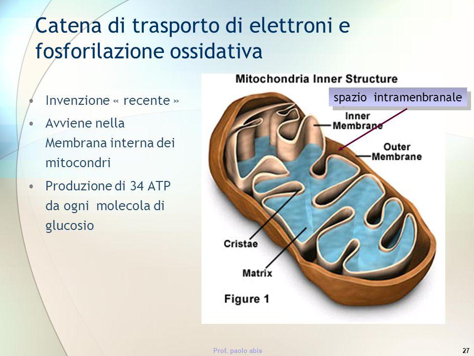 Prof. paolo abis27 Catena di trasporto di elettroni e fosforilazione ossidativa Invenzione « recente » Avviene nella Membrana interna dei mitocondri P