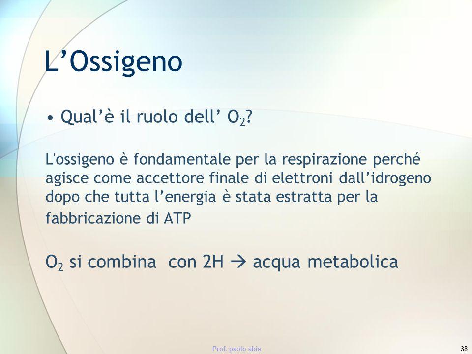 Prof. paolo abis38 LOssigeno Qualè il ruolo dell O 2 ? L'ossigeno è fondamentale per la respirazione perché agisce come accettore finale di elettroni