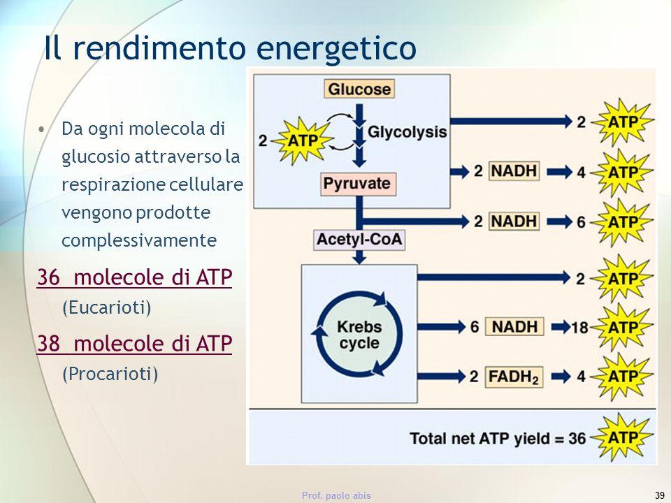 Prof. paolo abis39 Il rendimento energetico Da ogni molecola di glucosio attraverso la respirazione cellulare vengono prodotte complessivamente 36 mol