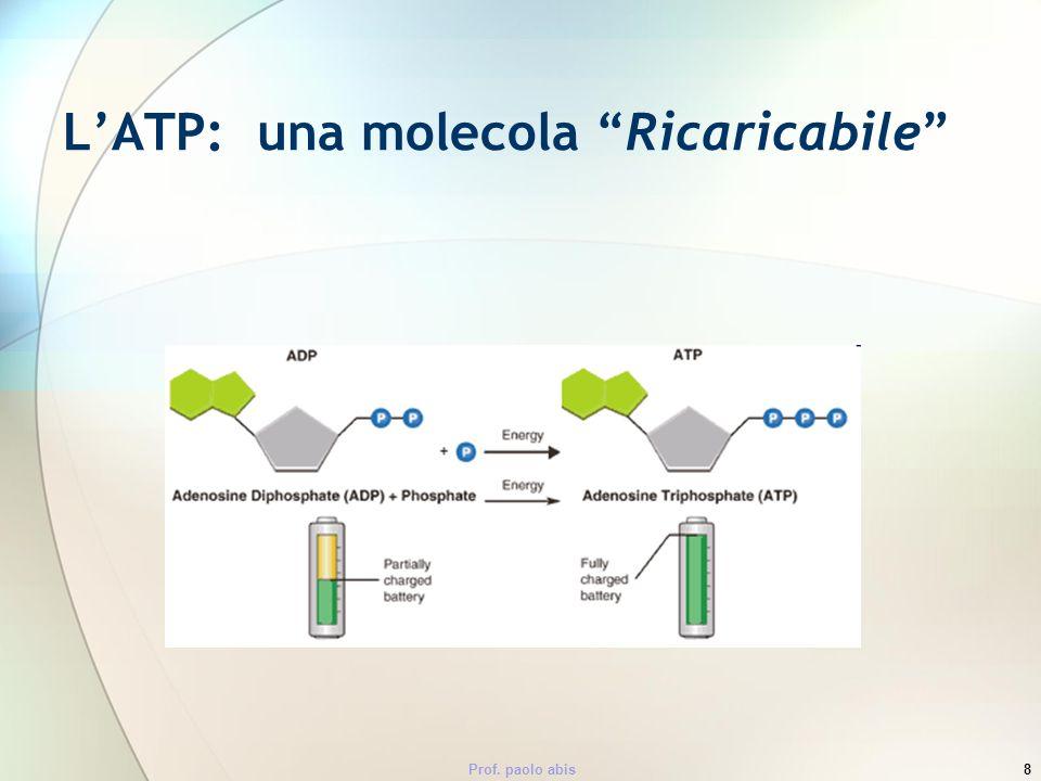 Prof. paolo abis8 LATP: una molecola Ricaricabile
