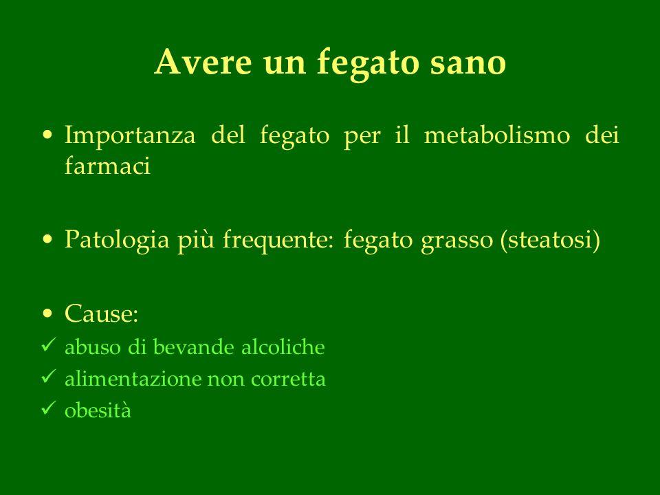 Avere un fegato sano Importanza del fegato per il metabolismo dei farmaci Patologia più frequente: fegato grasso (steatosi) Cause: abuso di bevande alcoliche alimentazione non corretta obesità