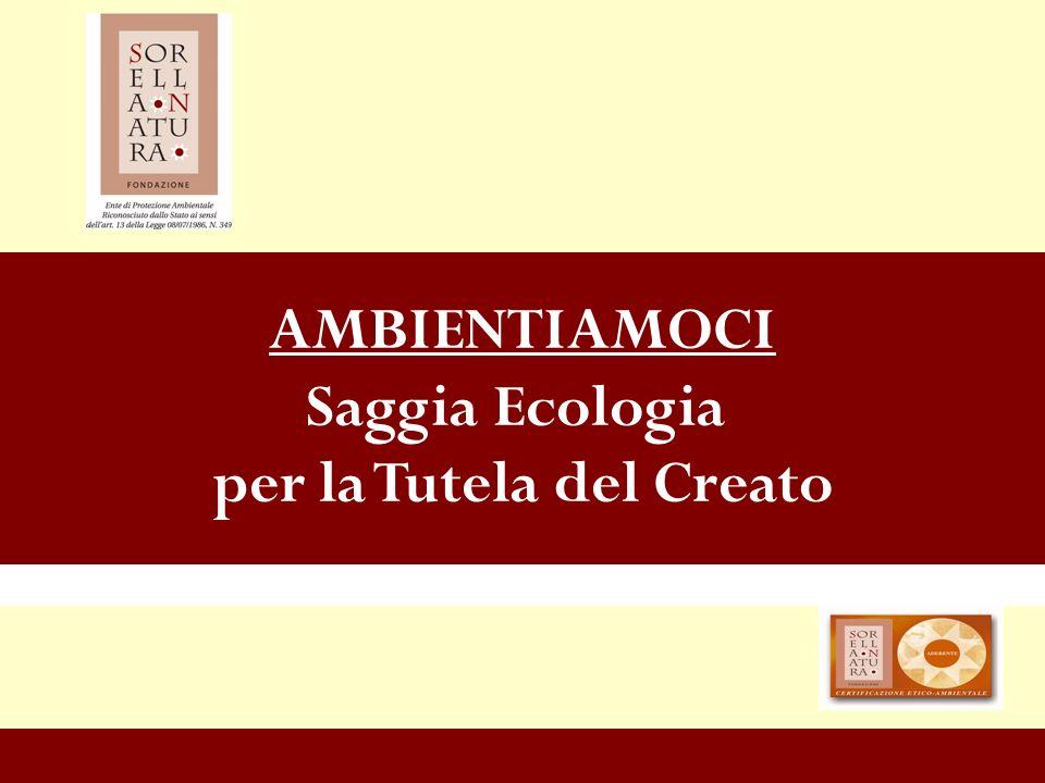 www.sorellanatura.org 2 Lesigenza di una nuova cultura ecologica che si fondi su di un corretto rapporto Uomo – Creato è sempre più forte e chiara.