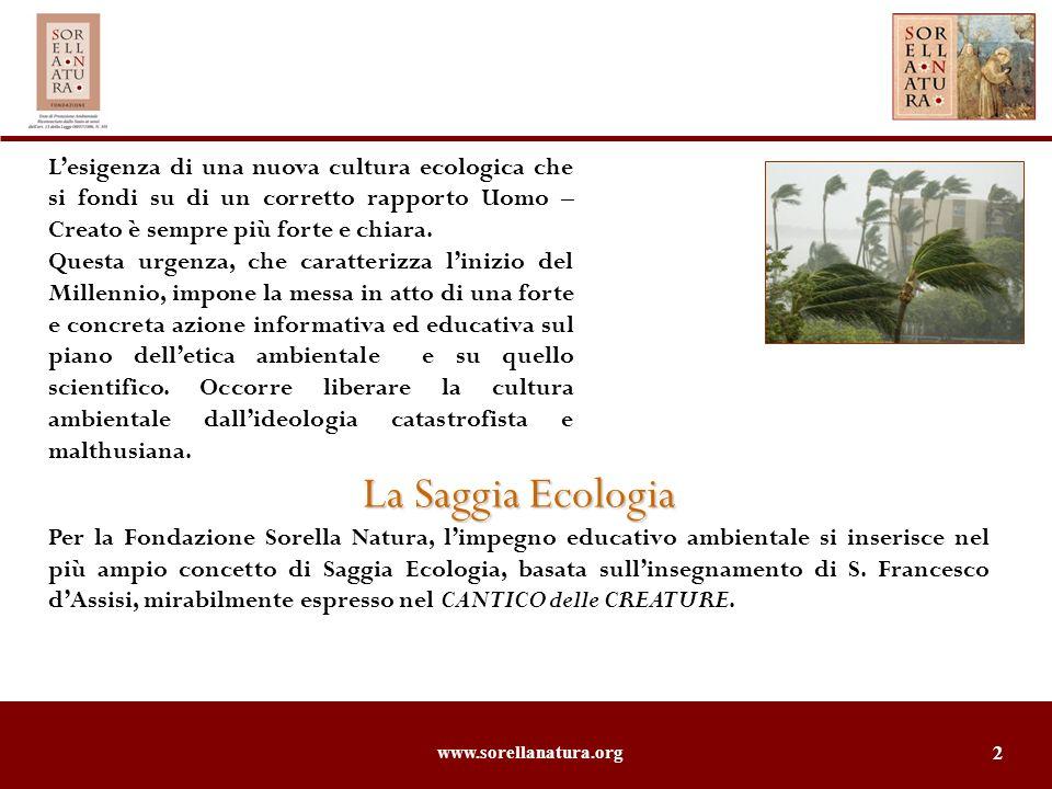 www.sorellanatura.org 2 Lesigenza di una nuova cultura ecologica che si fondi su di un corretto rapporto Uomo – Creato è sempre più forte e chiara. Qu