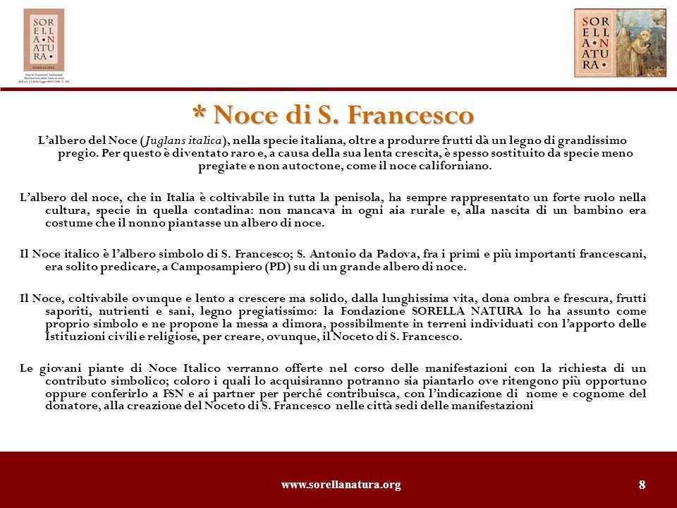 www.sorellanatura.org 8 * Noce di S. Francesco Lalbero del Noce (Juglans italica), nella specie italiana, oltre a produrre frutti dà un legno di grand