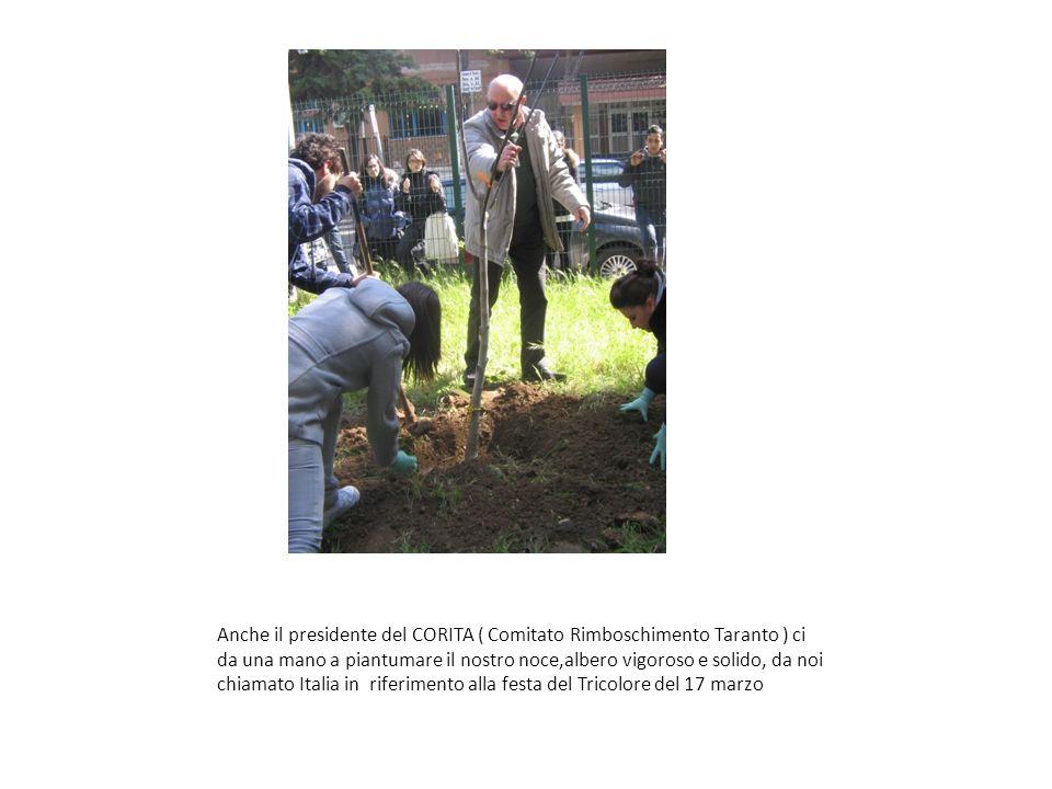 Anche il presidente del CORITA ( Comitato Rimboschimento Taranto ) ci da una mano a piantumare il nostro noce,albero vigoroso e solido, da noi chiamato Italia in riferimento alla festa del Tricolore del 17 marzo
