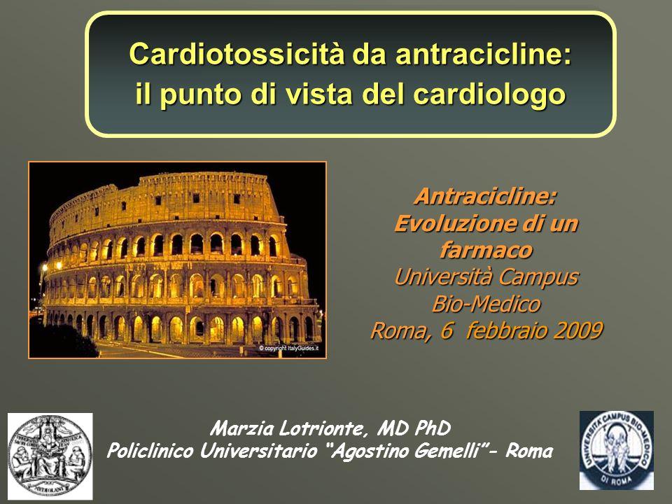 Marzia Lotrionte, MD PhD Policlinico Universitario Agostino Gemelli- Roma Antracicline: Evoluzione di un farmaco Università Campus Bio-Medico Roma, 6