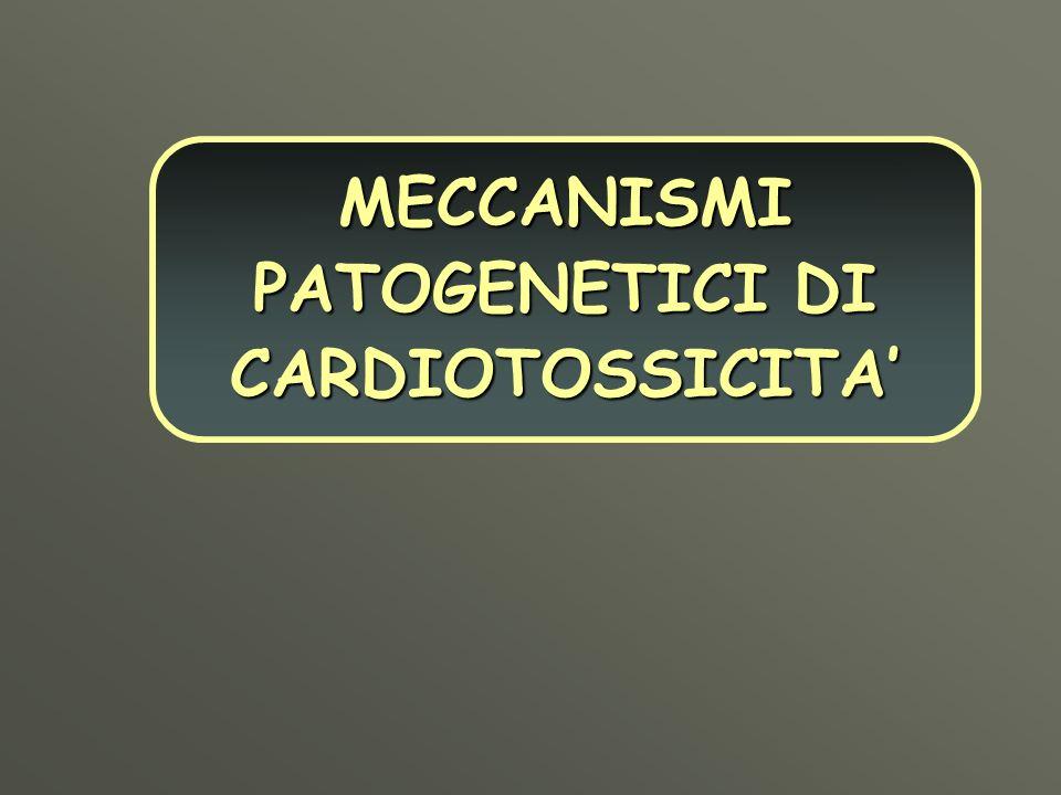 MECCANISMI PATOGENETICI DI CARDIOTOSSICITA