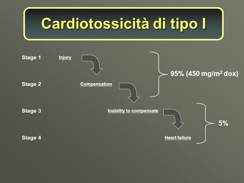 Injury Compensation Inability to compensate Heart failure Stage 1 95% (450 mg/m 2 dox) 5% Stage 2 Stage 3 Stage 4 Cardiotossicità di tipo I