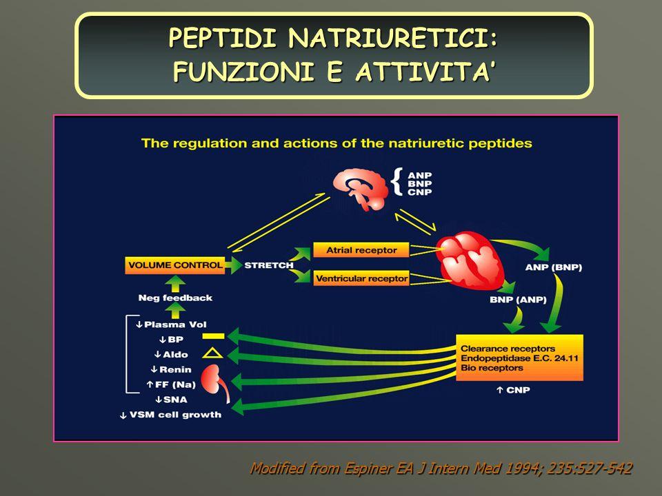 Modified from Espiner EA J Intern Med 1994; 235:527-542 PEPTIDI NATRIURETICI: FUNZIONI E ATTIVITA