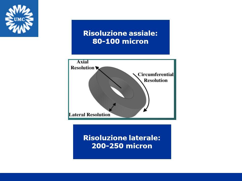 Risoluzione assiale: 80-100 micron Risoluzione laterale: 200-250 micron
