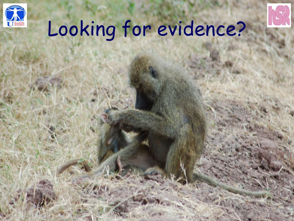 Looking for evidence?