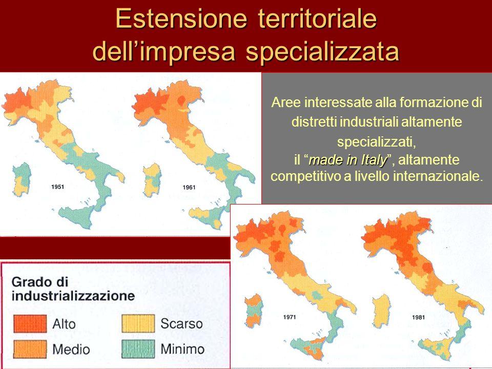 Estensione territoriale dellimpresa specializzata Aree interessate alla formazione di distretti industriali altamente specializzati, made in Italy il