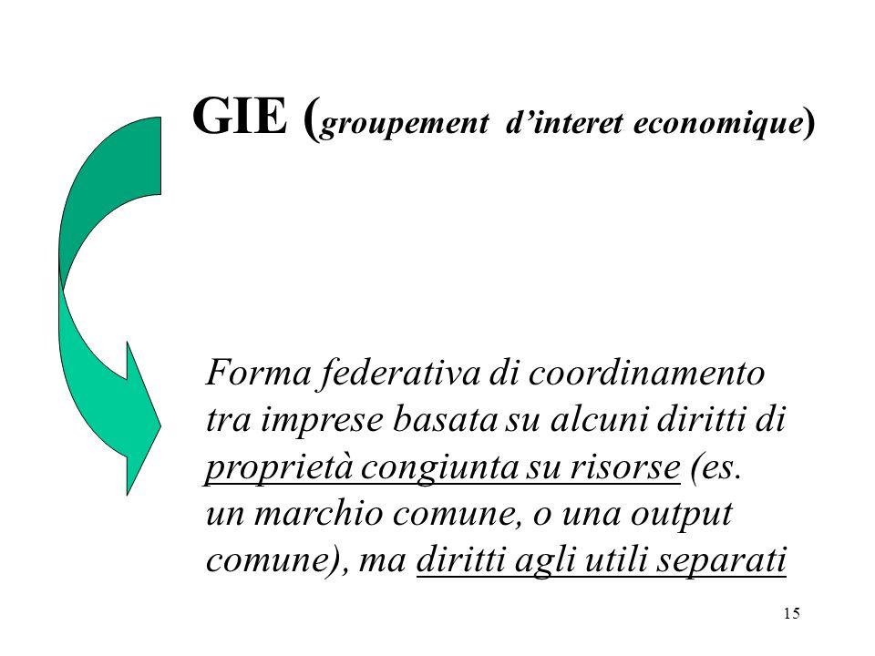15 GIE ( groupement dinteret economique ) Forma federativa di coordinamento tra imprese basata su alcuni diritti di proprietà congiunta su risorse (es.