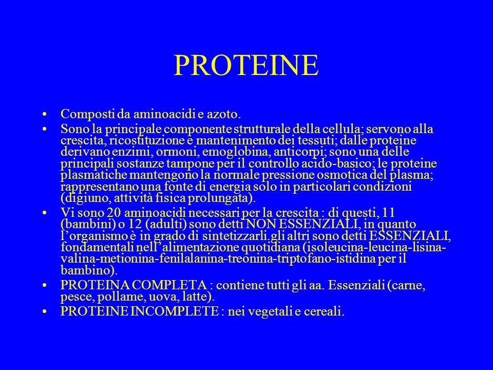 PROTEINE Composti da aminoacidi e azoto. Sono la principale componente strutturale della cellula; servono alla crescita, ricostituzione e mantenimento