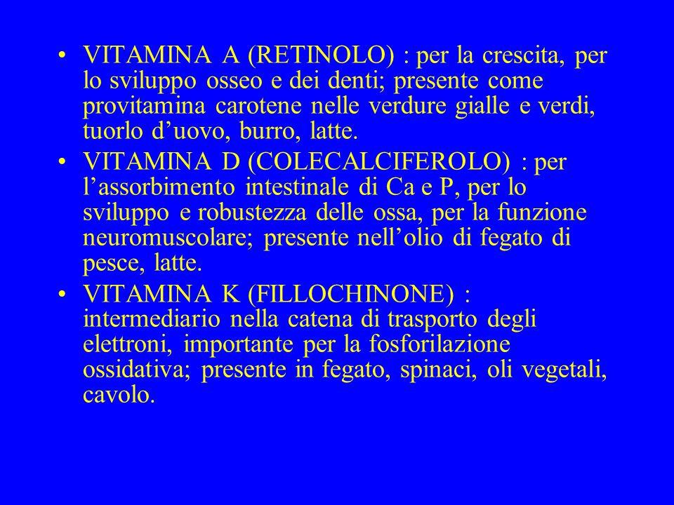 VITAMINA A (RETINOLO) : per la crescita, per lo sviluppo osseo e dei denti; presente come provitamina carotene nelle verdure gialle e verdi, tuorlo duovo, burro, latte.