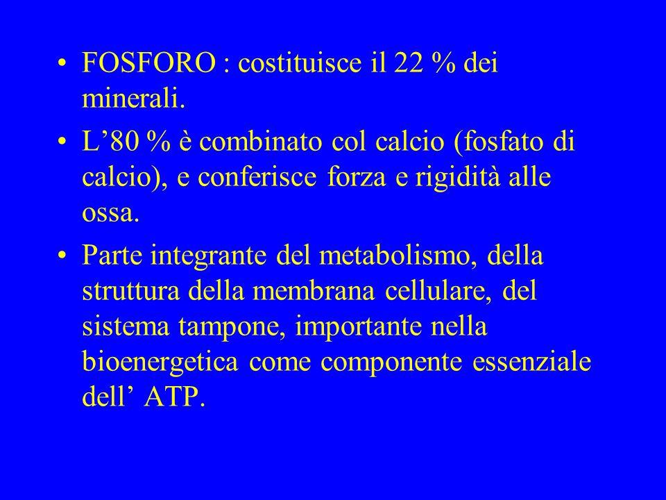 FOSFORO : costituisce il 22 % dei minerali.