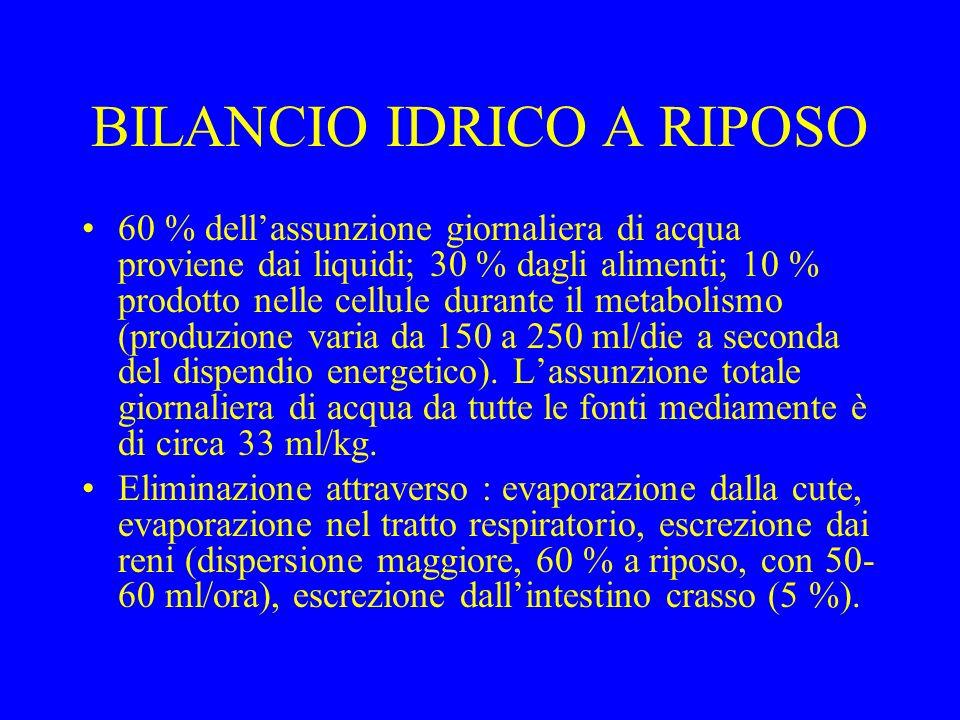 BILANCIO IDRICO A RIPOSO 60 % dellassunzione giornaliera di acqua proviene dai liquidi; 30 % dagli alimenti; 10 % prodotto nelle cellule durante il metabolismo (produzione varia da 150 a 250 ml/die a seconda del dispendio energetico).
