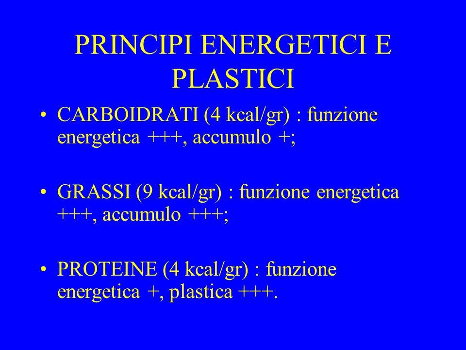 PRINCIPI ENERGETICI E PLASTICI CARBOIDRATI (4 kcal/gr) : funzione energetica +++, accumulo +; GRASSI (9 kcal/gr) : funzione energetica +++, accumulo +++; PROTEINE (4 kcal/gr) : funzione energetica +, plastica +++.