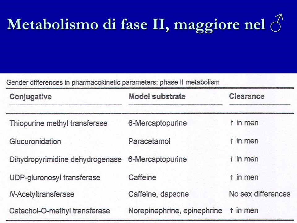 Metabolismo di fase II, maggiore nel Metabolismo di fase II, maggiore nel