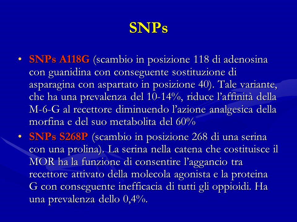 SNPs SNPs A118G (scambio in posizione 118 di adenosina con guanidina con conseguente sostituzione di asparagina con aspartato in posizione 40).