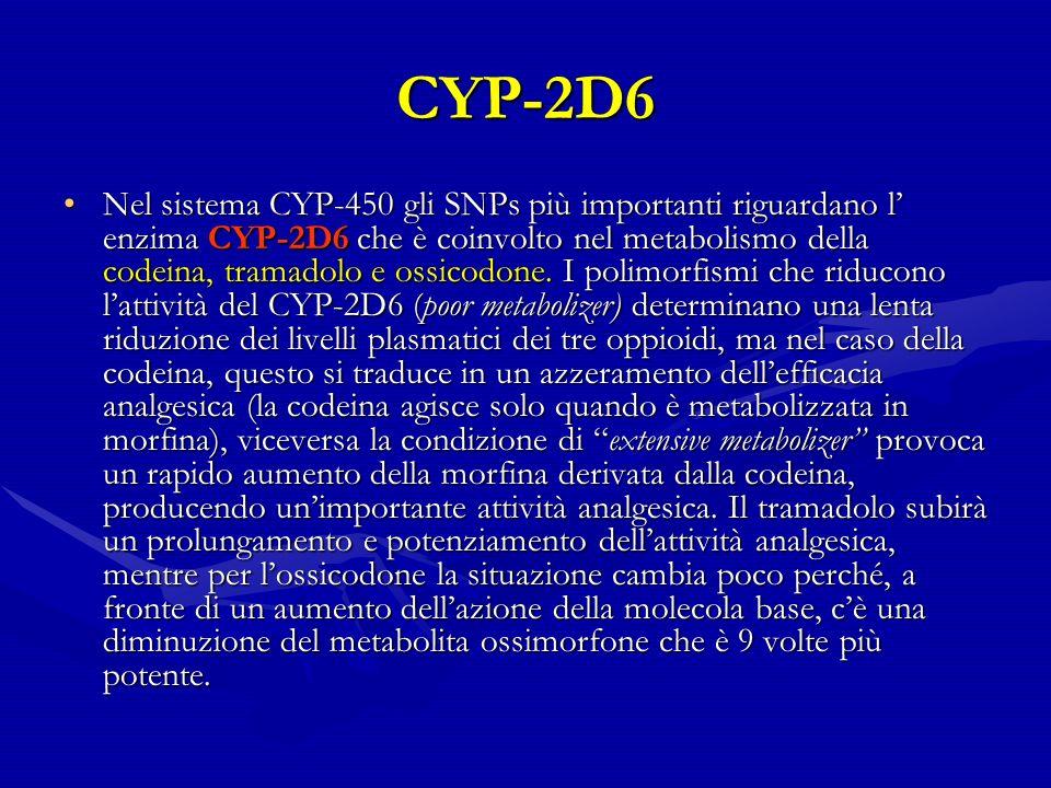 CYP-2D6 Nel sistema CYP-450 gli SNPs più importanti riguardano l enzima CYP-2D6 che è coinvolto nel metabolismo della codeina, tramadolo e ossicodone.