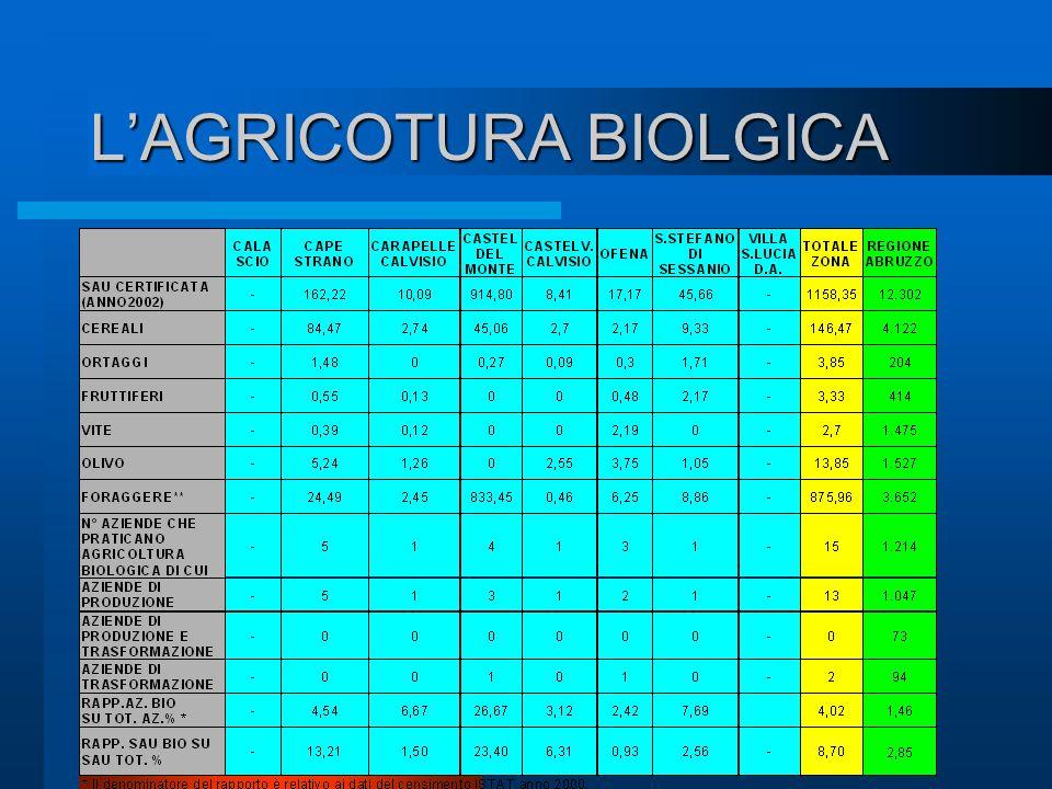 Agricoltura Zootecnia Varietà autoctone Gastronomia Allevamento ovino Prodotti Tipici