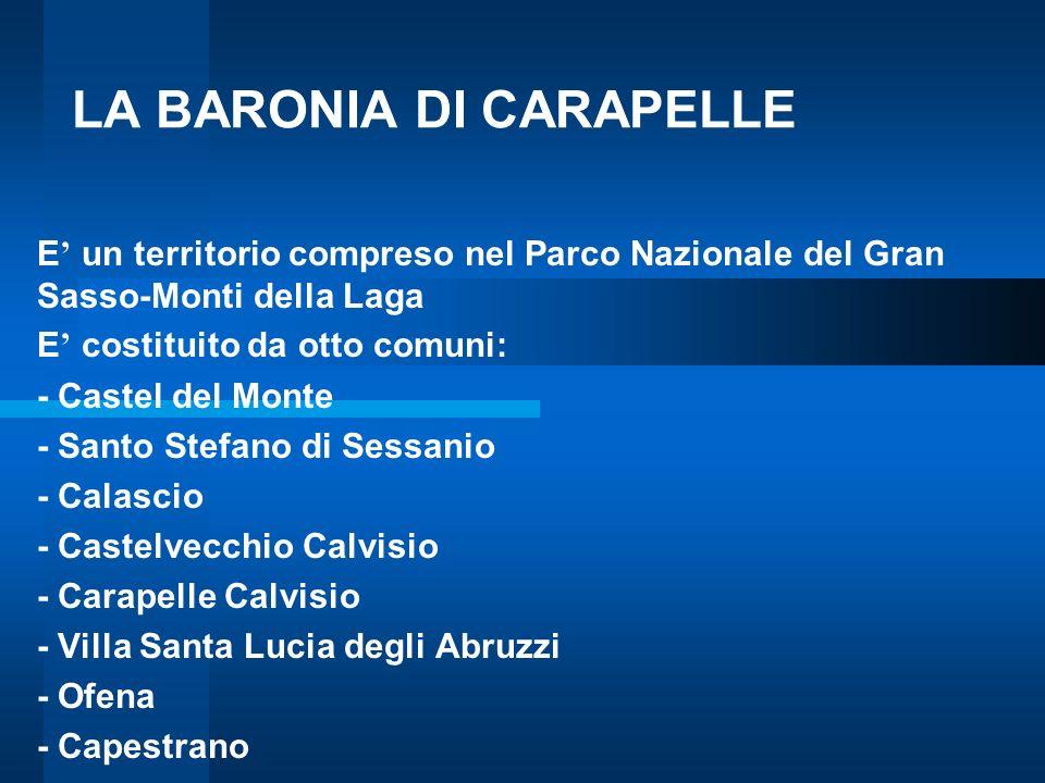 Localizzazione dellarea di studio prescelta BARONIA DI CARAPELLE Parco Nazionale Gran Sasso-Monti della Laga LAquila