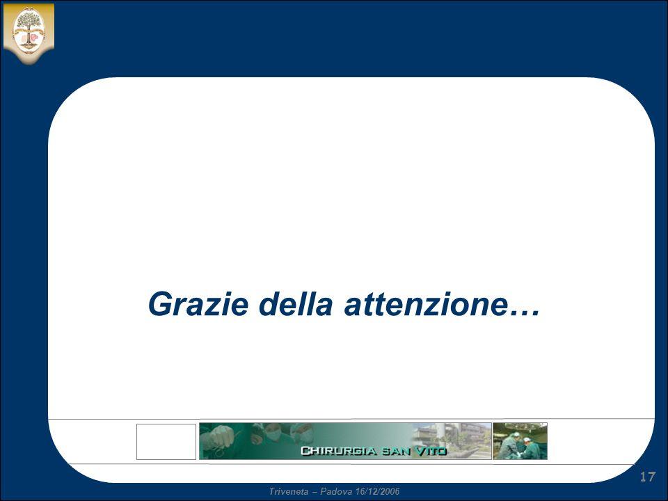 Triveneta – Padova 16/12/2006 17 Grazie della attenzione…