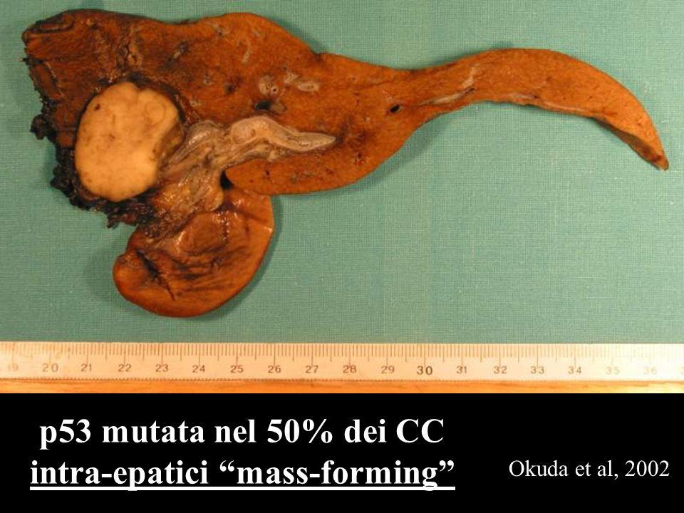 p53 mutata nel 50% dei CC intra-epatici mass-forming Okuda et al, 2002