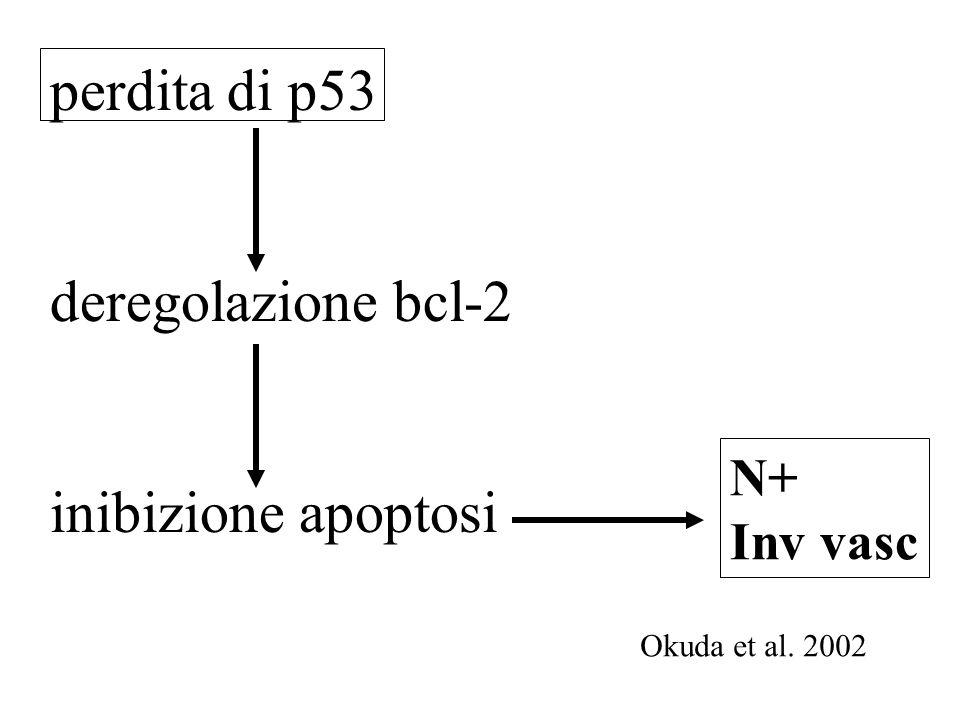 perdita di p53 deregolazione bcl-2 inibizione apoptosi N+ Inv vasc Okuda et al. 2002