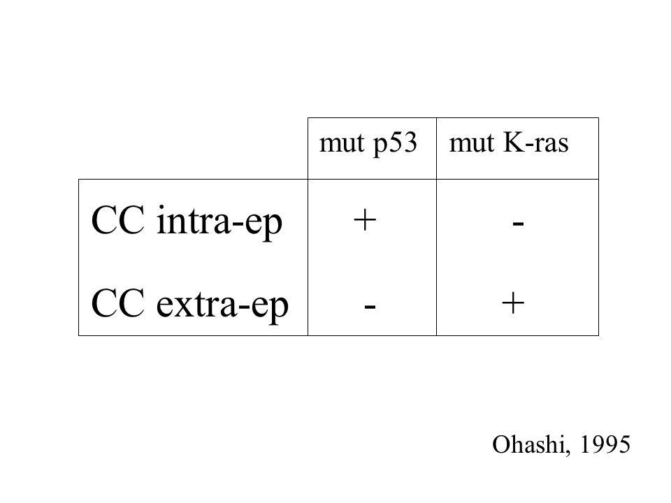 mut p53 CC intra-ep+- CC extra-ep -+ Ohashi, 1995 mut K-ras