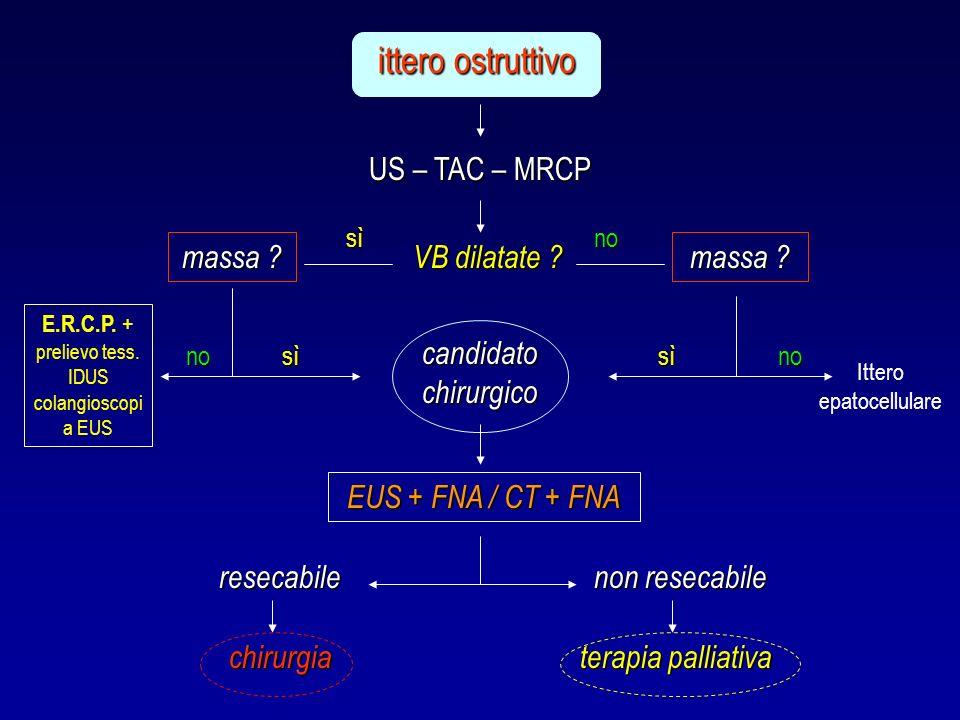 US – TAC – MRCP ittero ostruttivo VB dilatate ? massa ? E.R.C.P. + prelievo tess. IDUS colangioscopi a EUS candidato chirurgico EUS + FNA / CT + FNA r