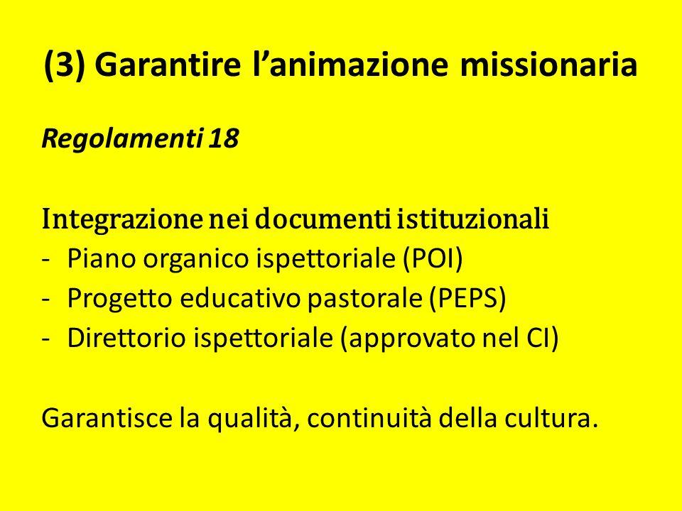 (3) Garantire lanimazione missionaria Regolamenti 18 Integrazione nei documenti istituzionali -Piano organico ispettoriale (POI) -Progetto educativo pastorale (PEPS) -Direttorio ispettoriale (approvato nel CI) Garantisce la qualità, continuità della cultura.