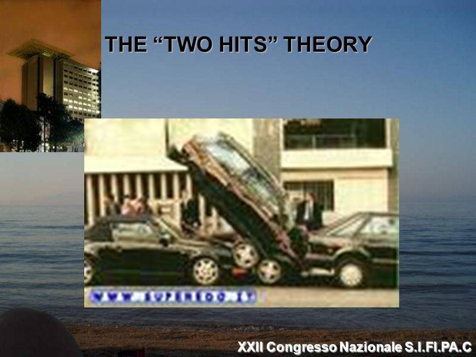 THE TWO HITS THEORY XXII Congresso Nazionale S.I.FI.PA.C