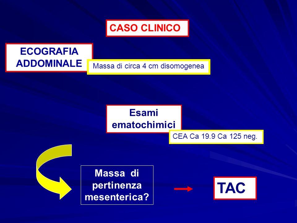 …massa di circa 4 cm con importante enhancement in fase arteriosa Lesione del mesentere Carcinoide Adenocarcinoma Linfoma GIST CASO CLINICO TAC DD