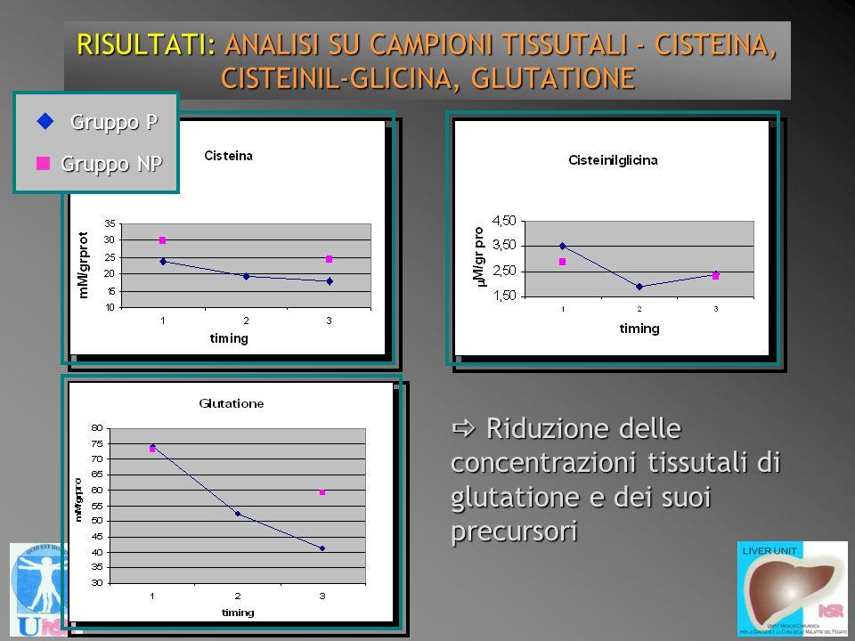 RISULTATI: ANALISI SU CAMPIONI TISSUTALI - CISTEINA, CISTEINIL-GLICINA, GLUTATIONE Riduzione delle concentrazioni tissutali di glutatione e dei suoi p