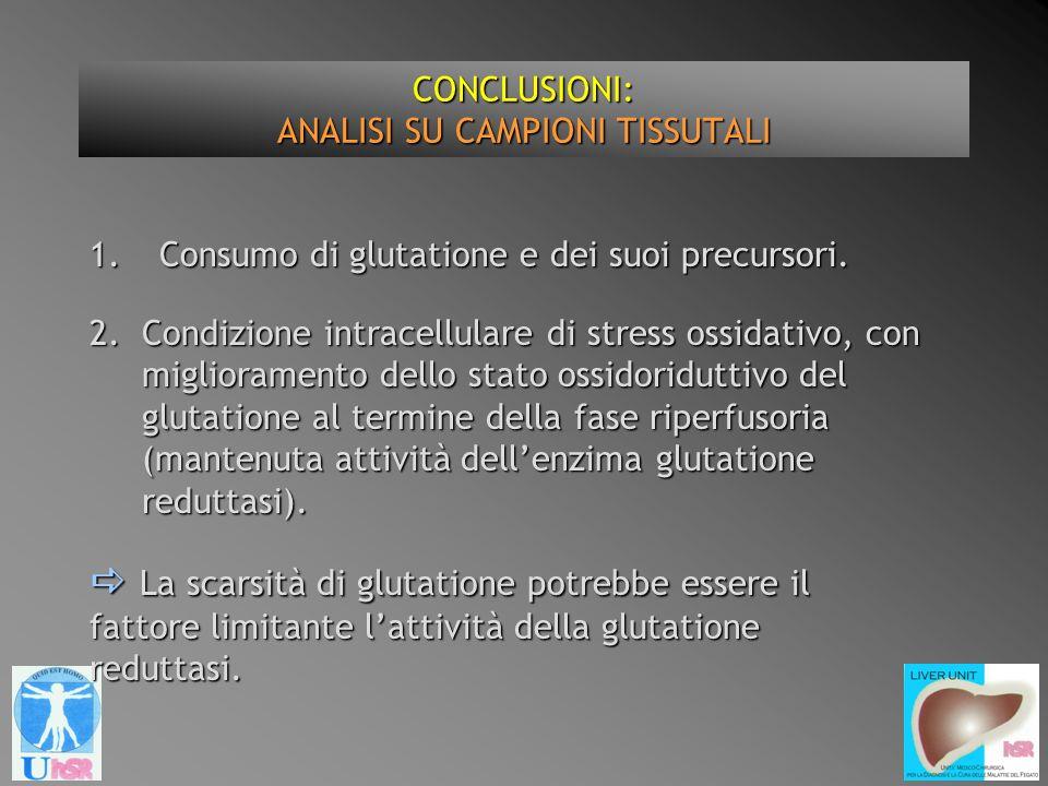 CONCLUSIONI: ANALISI SU CAMPIONI TISSUTALI 1.Consumo di glutatione e dei suoi precursori. La scarsità di glutatione potrebbe essere il fattore limitan