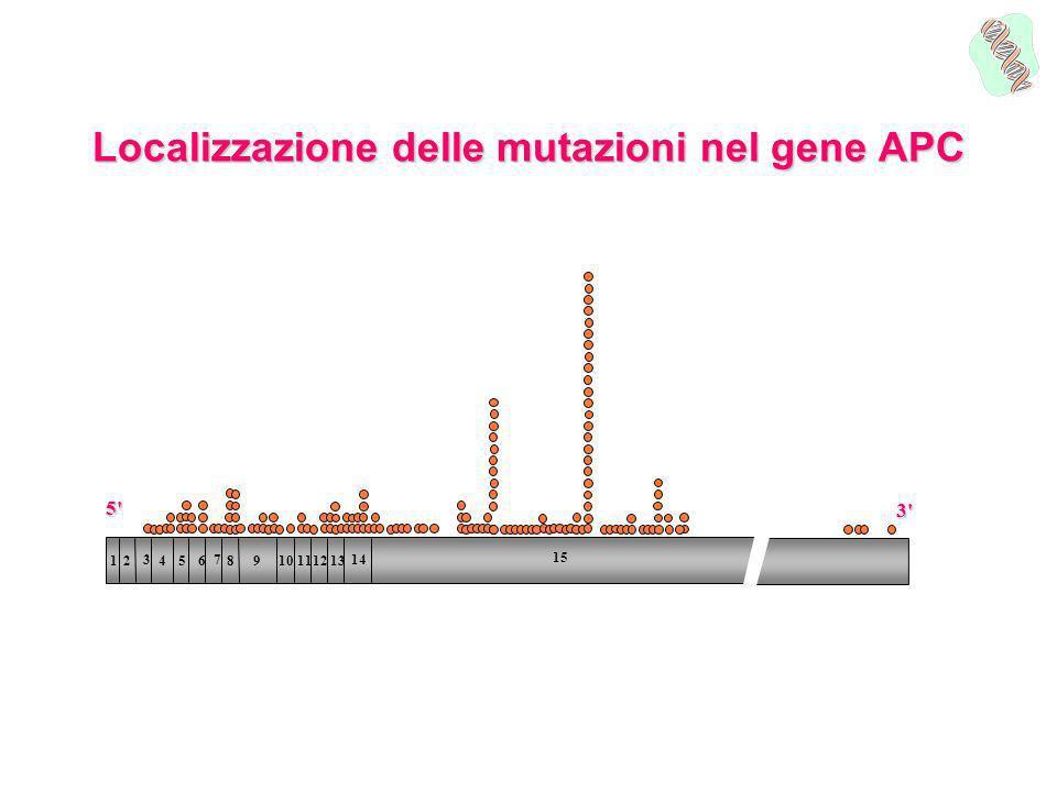 STOP 53 10 21 La posizione della mutazione Mutazioni in questarea del gene sono associate a poliposi attenuata Il test genetico è stato proposto alle figlie