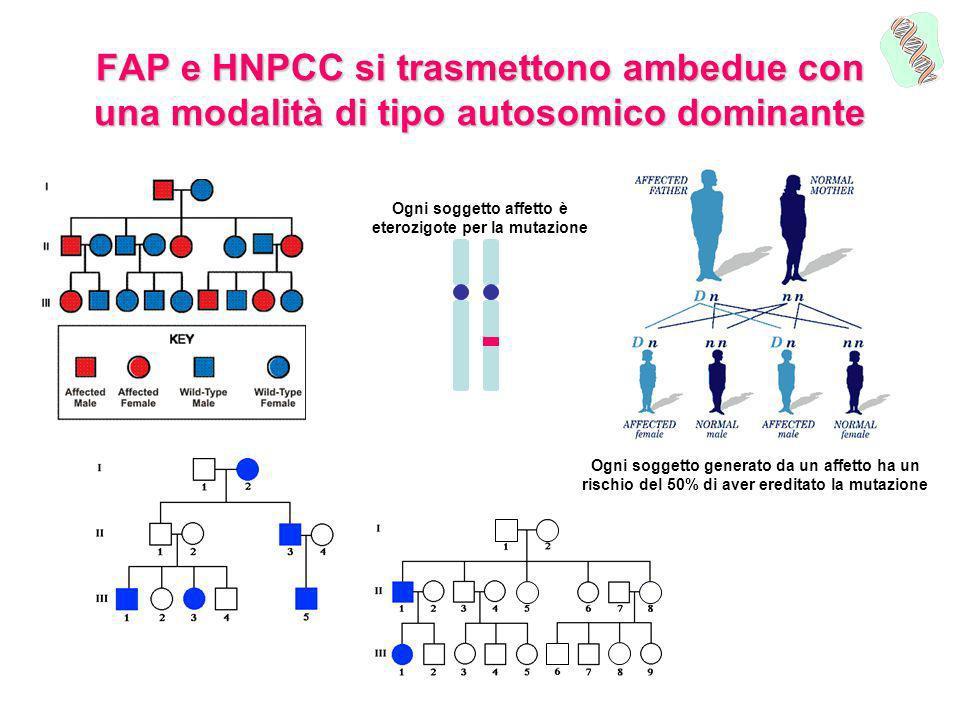 FAP e HNPCC si trasmettono ambedue con una modalità di tipo autosomico dominante Ogni soggetto affetto è eterozigote per la mutazione Ogni soggetto ge