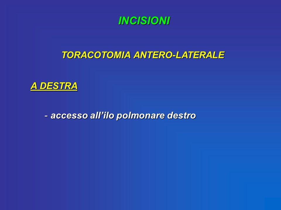 INCISIONI TORACOTOMIA ANTERO-LATERALE A DESTRA - accesso allilo polmonare destro