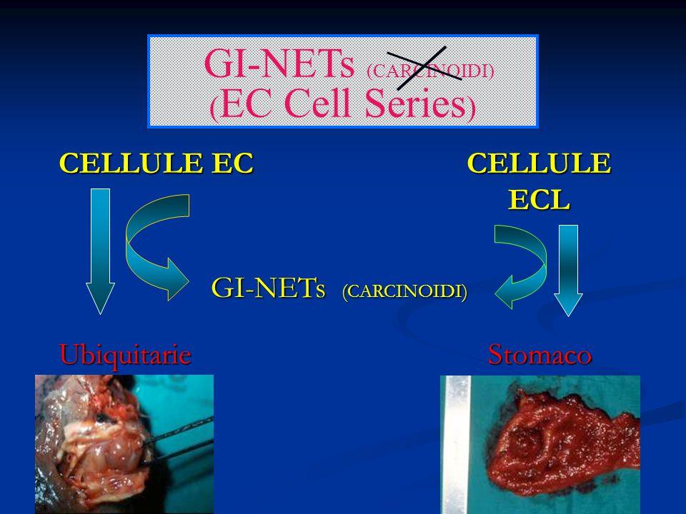 circa l1.77 % di tutti i tumori gastrici Dal 2.4 all8.7% dei GI-NETs.